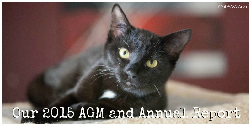 2015 AGM