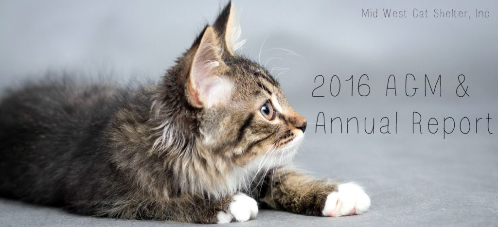 Our 2016 AGM and Annual Report