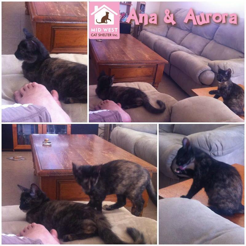 Sisters Ana & Aurora