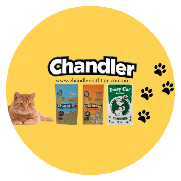 Chandler Cat Litter