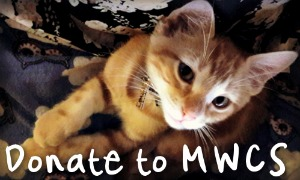 Donate to Mid West Cat Shelter, Inc