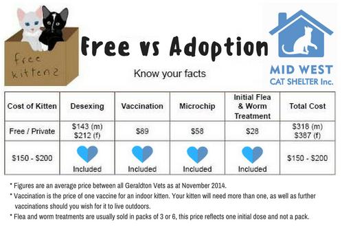 Free vs Adoption 2016