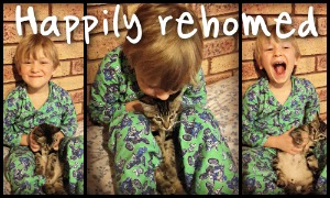 Happily rehomed. See our success stories here