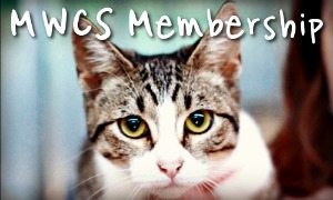 Become a Mid West Cat Shelter, Inc Member