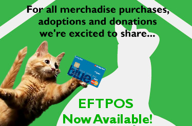 EFTPOS Now Available - Green